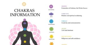Chakra Yoga For Beginners