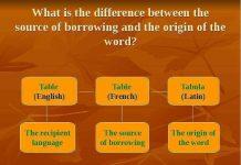 explain the origin