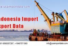 Indonesia Import Export