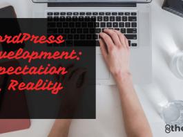 custom-WordPress-development-service