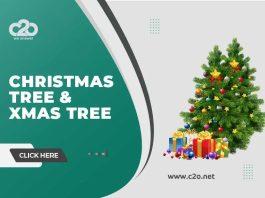 Christmas Tree & Xmas Tree Celebrations at c2o